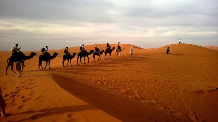 desert caravan dune ride
